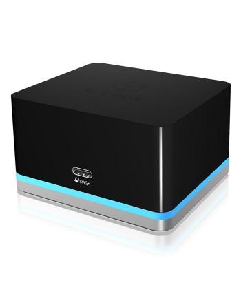 RaidSonic Icybox IB-DK2101-C